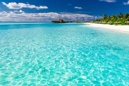Tropical beach in Maldives with coconut palm trees and white sand Stockfoto