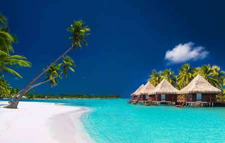 Beach villas on a tropical island with palm trees and white sandy beach