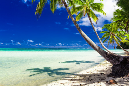 romance sky: Small beach with palm trees over tropical water at Rarotonga, Cook Islands