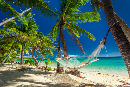 Empty hammock in the shade of palm trees on tropical Fiji Islands Stock Photo - 57181271