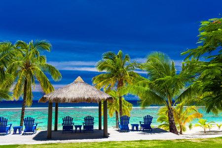 beach front: Blue chairs on a beach front of tropical island with palm trees