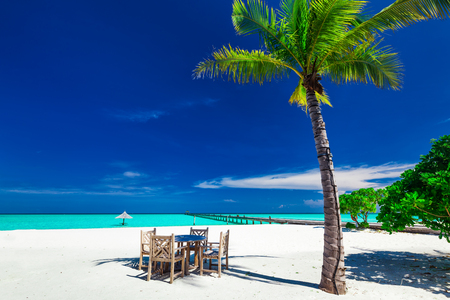bora: Tables and chairs in the shadow of palm tree on amazing tropical island