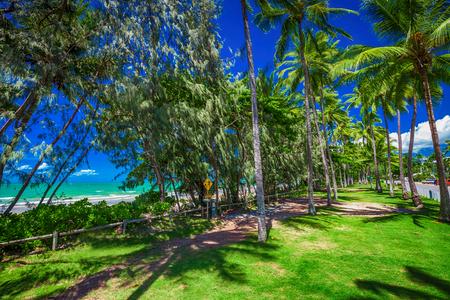 port douglas: Port Douglas four mile beach and ocean on sunny day, north Queensland, Australia
