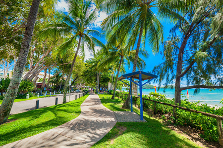 . The Esplanade in Palm Cove with palm trees, road and beach, Australia. Palm Cove is popular tourist destination in tropical north Queensland.