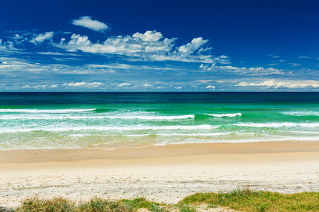 beach landscape: Empty beach with grass strip and breaking waves, Gold Coast, Australia