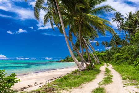 samoa: Tropical beach on Samoa Island with palm trees and dirt road Stock Photo