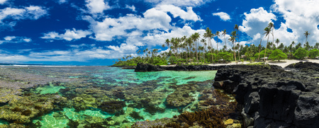 samoa: Coral reef perfect for snorkeling on south side of Upolu, Samoa Islands.