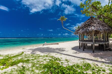 fale: Tropical vibrant natural beach on Samoa Island with palm tree and fale