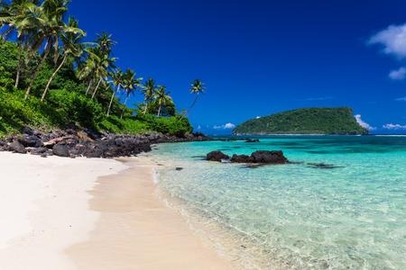 playas tropicales: Vibrante playa tropical Lalomanu en Samoa Isla con palmeras de coco Foto de archivo