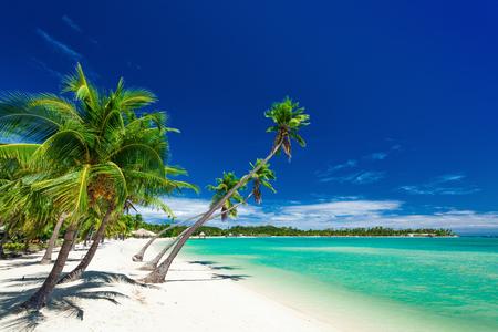 Palm trees over white beach on a a Plantation Island, Fiji, South Pacific Stock Photo