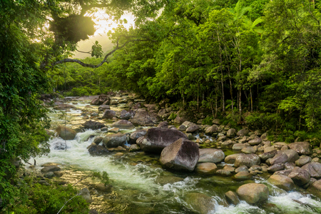 Mossman Gorge - river in Daintree National Park, north Queensland, Australia