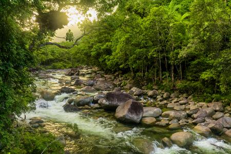 Mossman Gorge - rivier in Daintree National Park, Noord-Queensland, Australië Stockfoto
