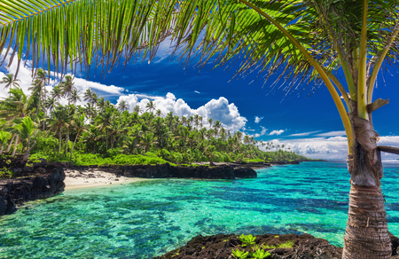 Beach with coral reef on south side of Upolu framed by palm leaves, Samoa Islands Stock Photo