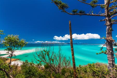whitehaven beach: Amazing famous Whitehaven Beach in the Whitsunday Islands, Queensland, Australia