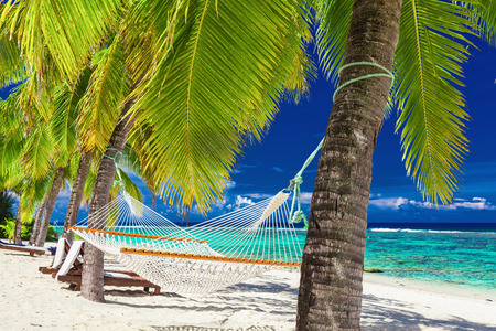 Empty hammock between palm trees on a tropical beach, Rarotonga, Cook Islands Stok Fotoğraf