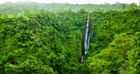 Vibrant tall Papapapaitai falls in the rain forest of Upolu island, Samoa