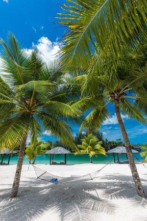 Palmen und Hängematte an einem tropischen sonnigen Strand, Inseln von Vanuatu