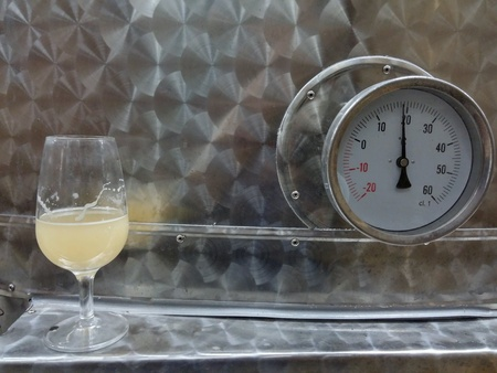 white: Glass of white wine from Piedmont in fermentation leaning over a steel barrel for vinif