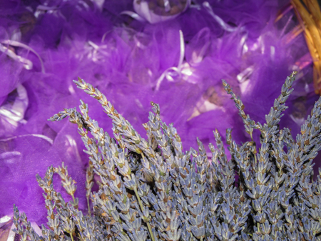 Dried lavender flowers and tulle Stock Photo