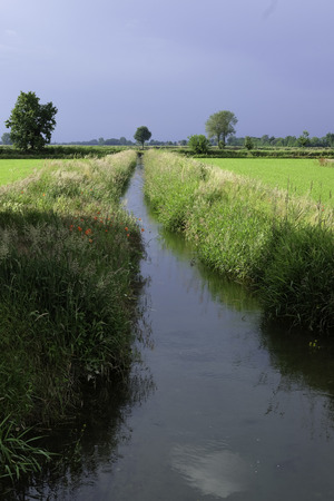 po valley: Irrigation ditch in the Po valley Stock Photo