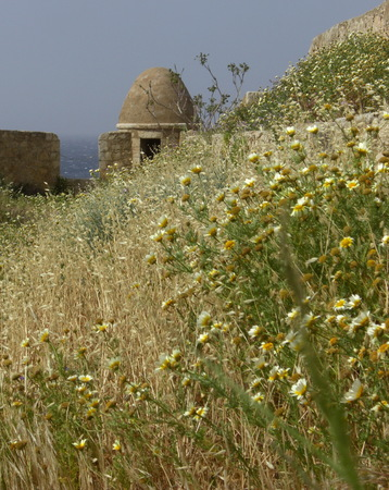 calmness: Everyday life at the island Crete in Greece in the summer