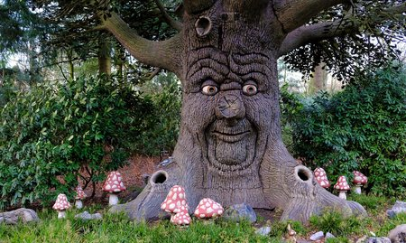 A new attraction with a talking tree that tells a fairy tale at The efteling in Duiksehoef, Kaatsheuvel, Netherlands