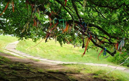 colorful ribbons in a tree at the landscape of avebury in england united kingdom