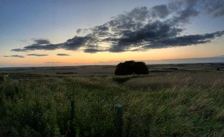 landscape at sunset at avesbury hill england united kingdom Standard-Bild