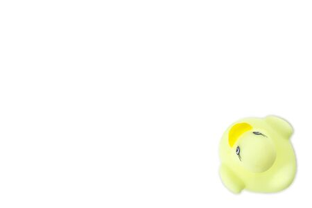 Yellow duck. Rubber toy isolated on white background.