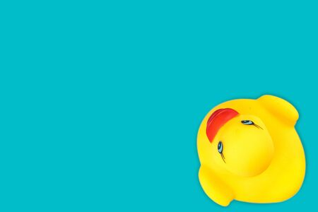 Duck background. Yellow rubber toy. Pay in pool.