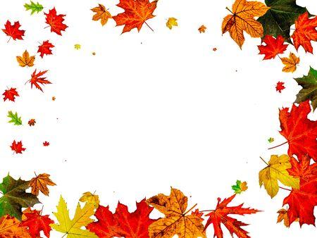 Autumn leaves wind. November falling pattern background. Season concept