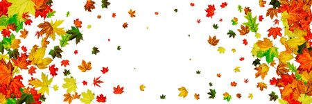 Autumn leaf pattern. Season falling leaves background. Thanksgiving concept
