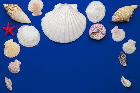 Hello Summer pattern background. Frame of White seashells, red starfish isolated on blue backdrop. Top view travel or vacation concept. Flat lay