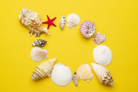Hello Summer pattern background. Frame of White seashells, red starfish isolated on yellow backdrop. Top view travel or vacation concept. Flat lay