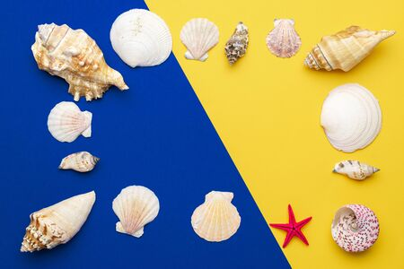 Summer background beach with shells and starfish in shape frame isolated on blue, yellow backdrop. Top view travel or vacation concept Reklamní fotografie