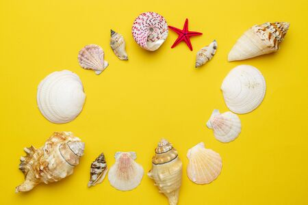Summer time concept with sea shells and starfish on yellow background, copy space. Flat lay, top view