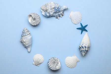 Tropical background. Trendy aquamarine light blue pastel color Sea shell with starfish and shells in shape frame. Summer background. Top view with copy space. Banco de Imagens