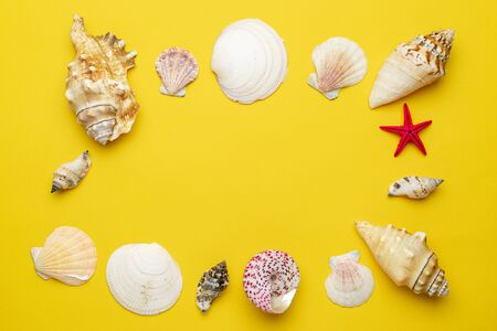 Summer sale. White seashells, red starfish in shape frame isolated on yellow background. Hello Summer is coming concept 版權商用圖片