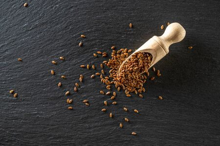 Flax seed plant with brown linseed in wooden scoop for organic oil on dark stone. Linseed, flaxseed isolated on black background. Raw vegan food snack concept.