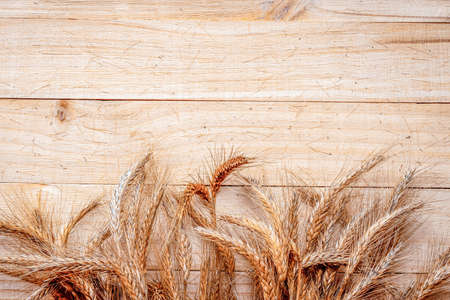 Rye grass. Whole, barley, harvest wheat sprouts. Wheat grain ear or rye spike plant on wooden texture or brown natural organic background, for cereal bread flour. Element of design Stockfoto