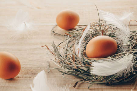 Easter egg. Happy Easter decoration: natural color eggs in basket with spring tulips, white feathers on wooden table background. Traditional decoration in sun light