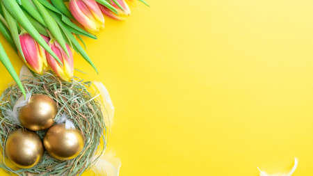 Easter Golden eggs in basket with spring tulips, white feathers on pastel yellow background in Happy Easter decoration. Spring holiday flat lay concept