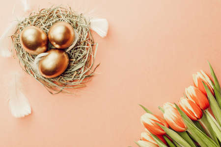 Golden easter color eggs in basket with spring tulips, white feathers on pastel pink background in Happy Easter decoration. Spring holiday top view concept
