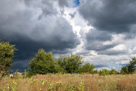 atmosphere: Summer landscape with field and trees at dramatic cloudy blue sky