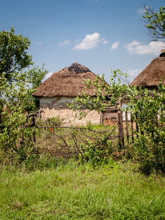 Rural yard with old farmhouse with thatched roof. Traditional Ukrainian cottage with a straw roof Фото со стока