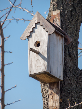 Handmade birdhouse hanging on a tree in the orchard. Hand wood shelter for birds to spend the wintertime. Stockfoto