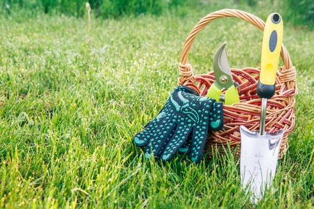 Small hand garden trowel, pruner and black gloves with wicker basket in green grass. Garden tools and equipment. Reklamní fotografie