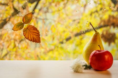 Red apple, yellow pear, flower and dry leaf on window glass with water drops in the blurred natural background. Fallen leaf and rain drops on a windowpane with autumn trees in the background.