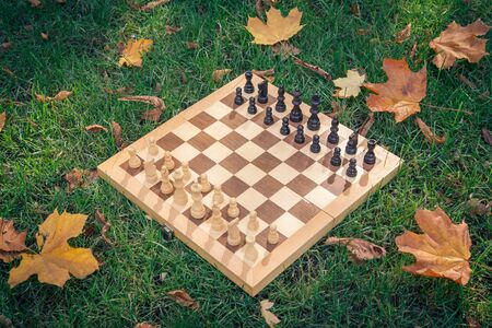 Wooden chessboard and chess pieces on a grassy ground covered with dry yellow leaves in the city park. Top view. 免版税图像