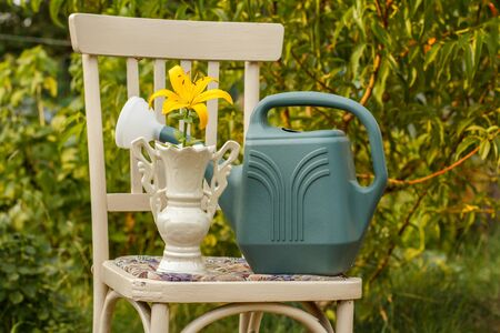 Vase with lily flower and watering canon old chair in natural background. Garden in summer day.